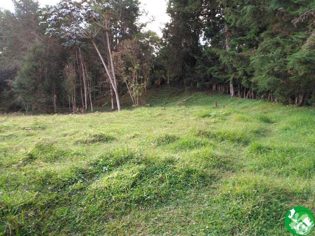 Lote en venta sector Sajonia - Bienes de Antioquia